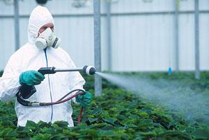 pesticide-300