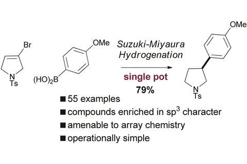 Practical synthesis of pharmaceutically relevant molecules enriched in sp3 character