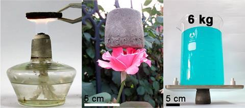 Lightweight and Ultrastrong Polymer Foam resting on a flower