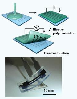 hydrogelelectrode-250