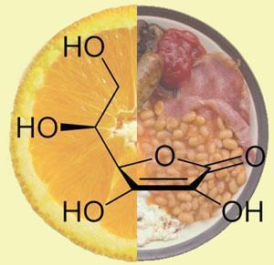 vitamin-C-fat-300