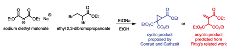 Scheme showing two proposed products of the reaction between sodium diethyl malonate and ethyl 2,3-dibromopropanoate