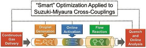suzuki miyaura optimisation