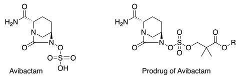 Avibactam and avibactam prodrug structures