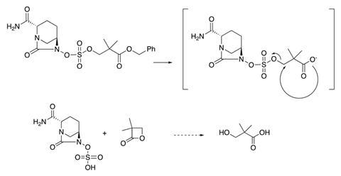 Mechanism of avibactam release