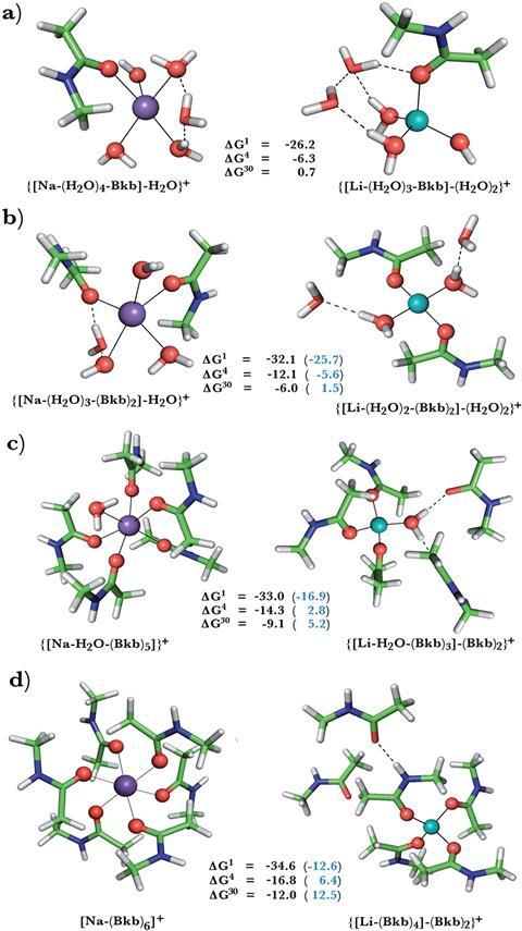 The study assessed the free energies for replacing sodium with lithium ions in protein binding pockets