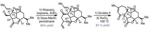 Organic Matter - Pavidolide, Fig 3