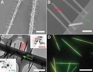 Green-nanowires_ja209815f-fig2_300