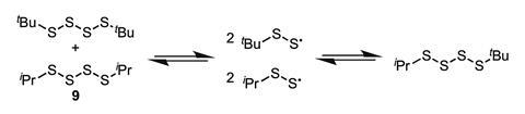 Thermal equilibration of tetrasulfides