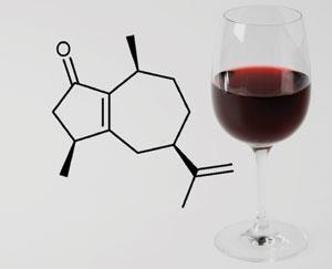 red-wine-300