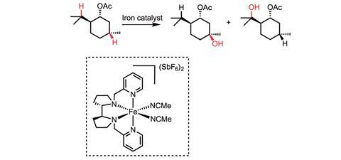iron-catalysed C–H bond activation