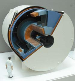 FEATURE-MRI-250