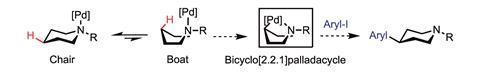 palladium-catalysed C-H activation