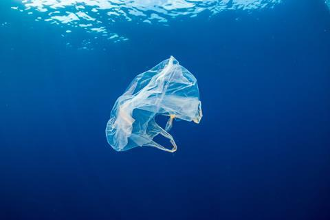 plastic bag in water