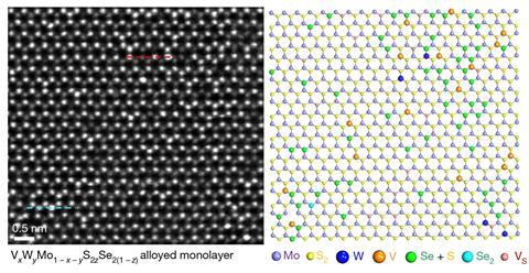 STEM image of quinary monolayer alloy
