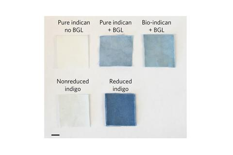 Bio-indican can be used as an effective, reductant-free cotton textile dye. (a) Top row, Pure indican with no β-glucosidase (BGL); pure indican with β-glucosidase; bio-indican with β-glucosidase. Bottom row, Indigo, nonreduced; indigo, reduced with sodium