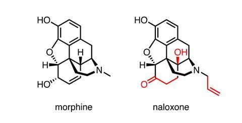 A picture showing the structures of morphine and naloxone
