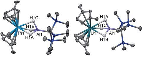 Th(III)–Al complex (left) and the uranium analogue (right)
