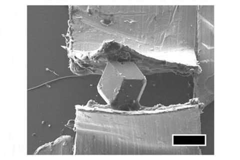 SEM image of the crystal at 20 kV between segments of copper adhesive tape. The scale bar and the giant ZIF-8 crystal are 200 mm