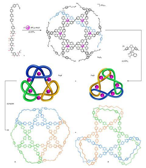 The 12 component assembly of the intermediate hexameric circular helicate and the synthesis of the composite knot