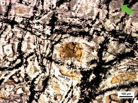 Large optical views of the deeply serpentinized harzburgite recovered by drilling the Atlantis Massif