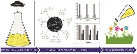 Pharmaceutical removal in synthetic human urine using biochar