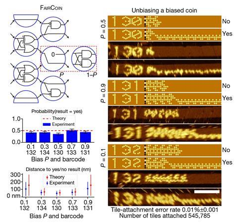 An image showing the randomized circuit FairCoin