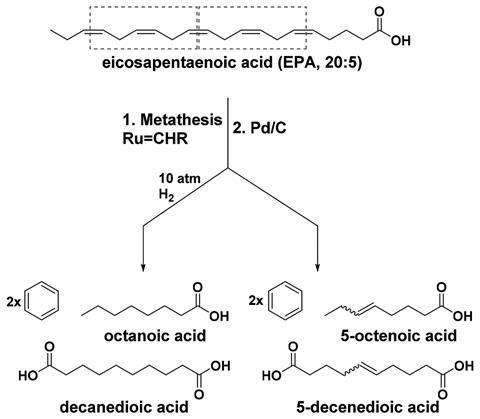 Self-metathesis of eicosapentaenoic acid – molecular structures and schematic
