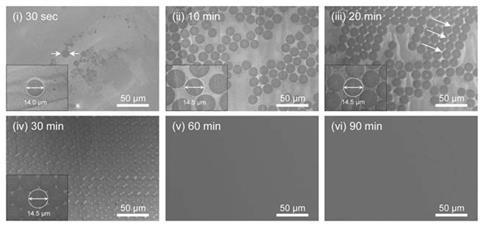 Single crystal hBN Science 1c