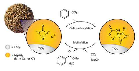 A scheme showing a closed cycle for the esterification of benzene using CO2 and methanol