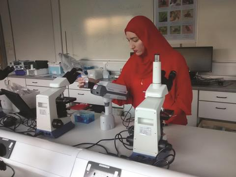 Saluf Assi testing Viagra samples in lab