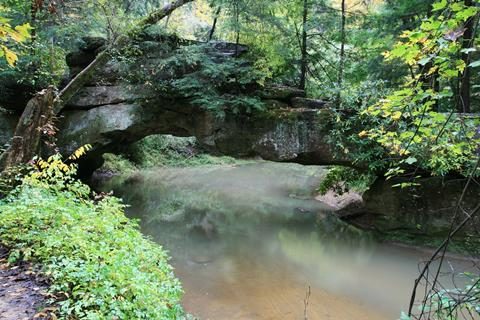Rock bridge over swift camp creek in the clifty wilderness of the red river gorge, Kentucky