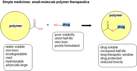 Small molecule polymer therapeutics