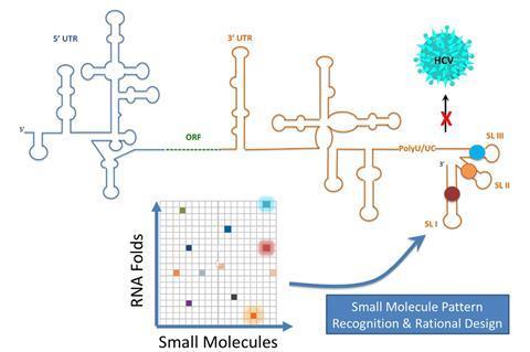 Designing small molecule RNA binding antivirals - schematic