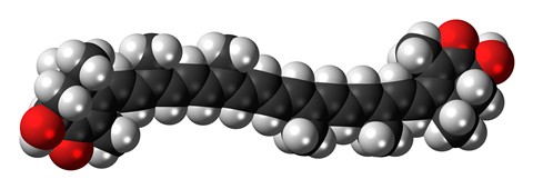 Space-filling model of the astaxanthin molecule