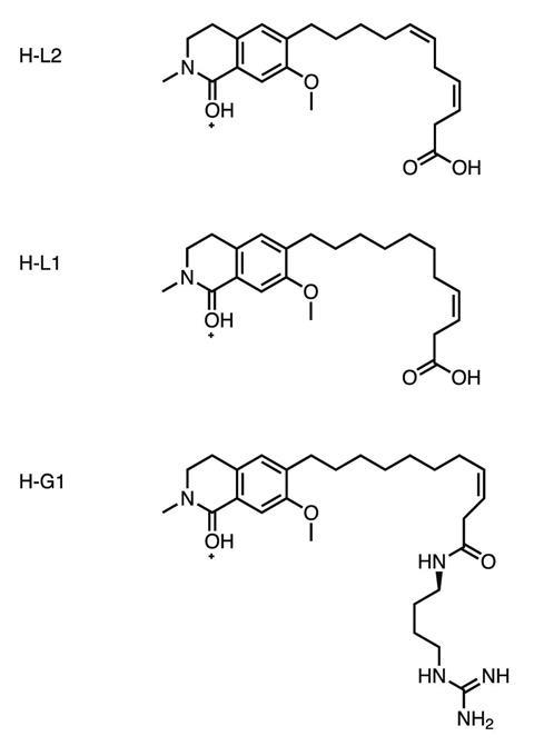 Hyloin chemical structures, as seen in fluorescent frogs