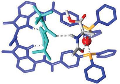 cofactor-catalysis_410