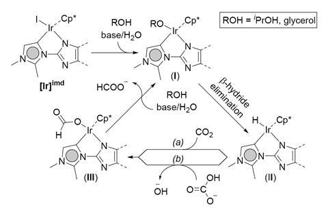 A scheme showing a plausible catalytic cycle for the present CO2- transfer hydrogenation protocol
