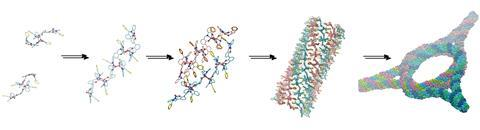 Self-assembly of bis-salphen compounds: from semiflexible chains to webs of nanorings