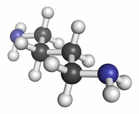 Putrescine molecule