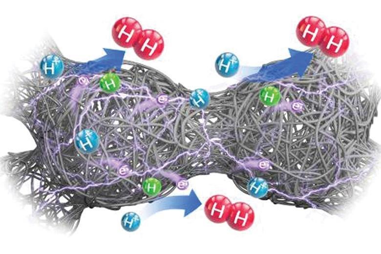 Silk cocoon-shaped electrocatalyst for water splitting | Research