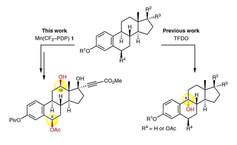 A scheme showing small-molecule catalyst Mn(CF3–PDP), which achieves chemoselective hydroxylation of strong methylene C–H bonds in the presence of aromatic functionalities