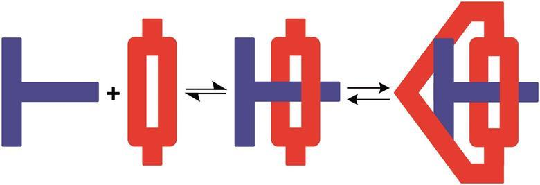 formation of molecular suit